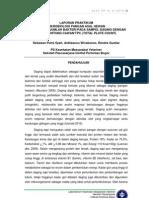 Perhitungan Jumlah Bakteri pada Sampel Daging dengan Metode Hitung Cawan/TPC (Total Plate Count)