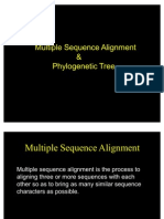 Multiple Sequence Alignment & Phylogenetic Tree