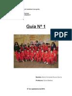Guia 1. Practica I Año 2010