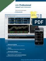 TeleTrader Professional Flyer (Deutsch)