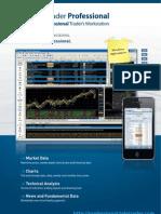 TeleTrader Professional Flyer (English)