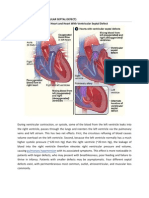 pathophysiology CHD