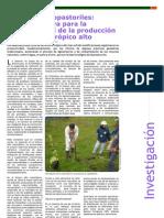 Investigación - Sistemas Silvopastoriles, una Alternativa para la Sostenibilidad de la Producción Animal en el Trópico Alto