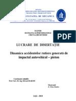 disertatie_spcr_2010