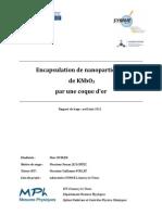 Encapsulation de Nanoparticules de KNbO3 Par Une Coque d'or - Marc DUBLED