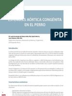 6218934-27-estenosis-aortica