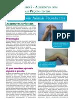 animais_peconhentos