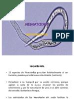 Nematodos Micro