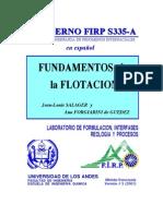 Fundamentos de La Flotacion