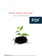 Biochar Carbon Negative Tesina