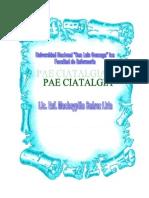 PAE DE CIATALGIA NANDA NIC NOC