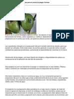 387 Extractos Vegetales Ferment a Dos Para El Control de Plagas Purines