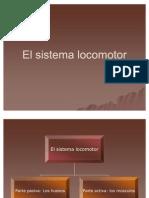 Elsistemalocomotor