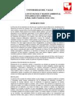Contaminacion_Ambiental[1]