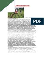 Situación de la Agricultura Peruana