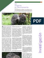 Investigación - La Conservación de la Fauna Silvestre, un Compromiso Permanente