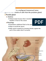 Prostate Cancer Edit