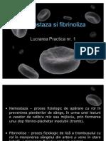 1 Hemostaza lp1