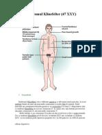 SindromulKlinefelter