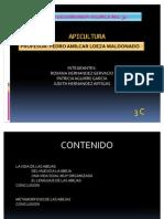 APICULTURA - 3C