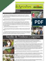 Informativo - Junho de 2011 (Página 7)