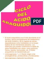 Ciclo del ácido Araquidónico