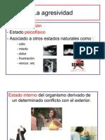 Psicología II - 6 - La Agresividad