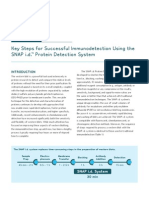 Key Steps for Successful Immunodetection Using the SNAP i.d.™ Protein Detection System