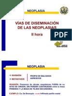 Neoplasia II Hora