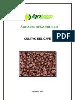 Cultivo Del Cafe