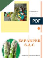 ESPARPER S.A.C....