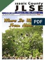 Pulse June,July 2011