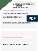 DEBIDO PROCESO, 14-06-11