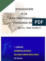INTRODUCCIONALAANATOMIACLASE2005