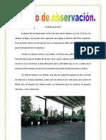 Diario de observacion