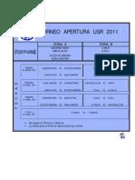 2011 - TORNEO  APERTURA  USR