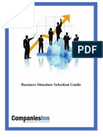 Corporate Business Structure 1.1