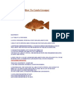 How to Catch Grouper eBook