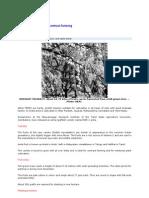 Amla - Contract Farming