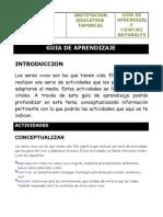 GUIA_DE_APRENDIZAJE_SENA[1]