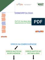 001 - Dismorfologia