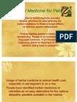 Herbal Medicine for Pets