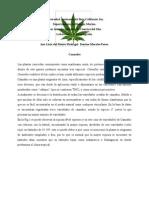 Biogeografia de Cannabis
