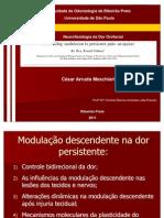 Dor persistentev2