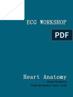 Ecg Workshop