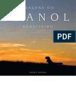 Imagens Do Etanol Brasileiro