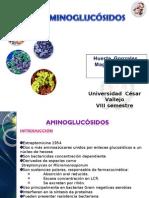Expo Aminoglucosidos
