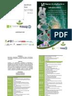 Programa-Definiivo-VISimposio (1)