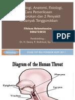 Embriologi Anatomi, Fisiologi Cara Pemeriksaan