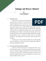 Brain Damage & Brocca Aphasia